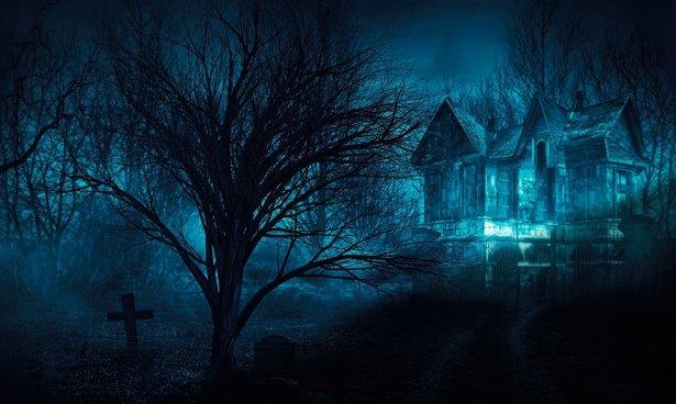 Silent Cove Release Promo